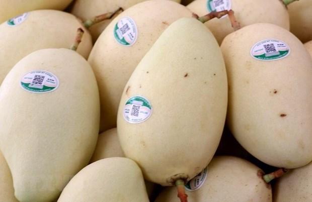 Frutas de Vietnam buscan terreno en el mercado global hinh anh 1