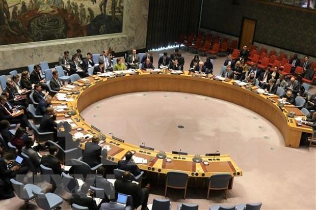 Valora Vietnam esfuerzos de ONU en proceso de paz en Libia hinh anh 1