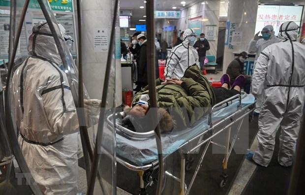 Cancelan aerolineas filipinas vuelos a China por nuevo coronavirus hinh anh 1