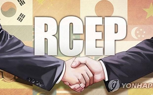 Inician en Bali reunion especial sobre posibilidad de firmar acuerdos de RCEP en 2020 hinh anh 1