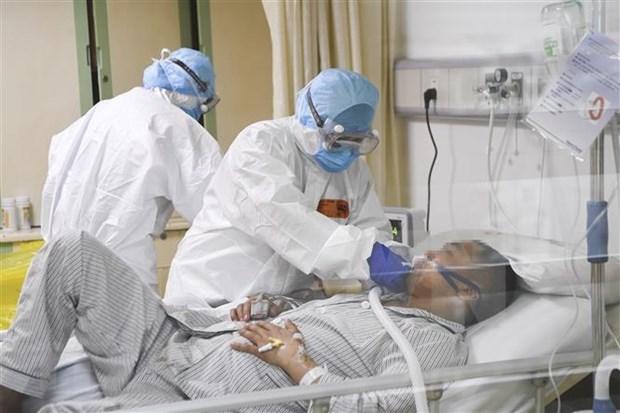 Paralizan en Vietnam recepcion de trabajadores chinos por nuevo coronavirus hinh anh 1