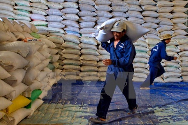 Crecen exportaciones de arroz vietnamita a Filipinas en 2019 hinh anh 1