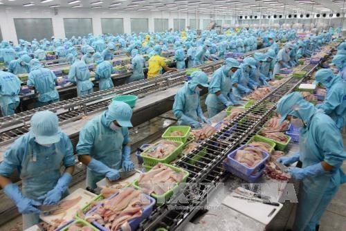 Vietnam invierte en el procesamiento de productos agricolas hinh anh 1