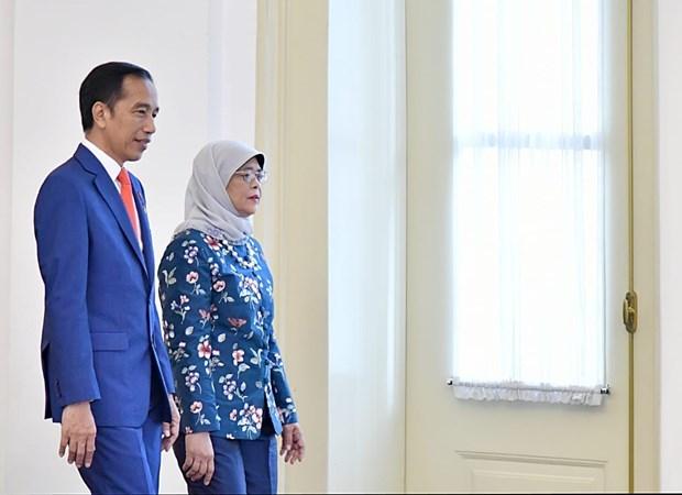 Impulsan Indonesia y Singapur cooperacion multisectorial hinh anh 1
