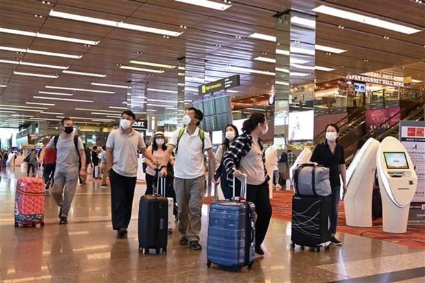 Informa Singapur nuevos casos de infeccion por coronavirus hinh anh 1