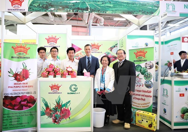 Empresas de Vietnam participan en Fruit Logistica 2020 hinh anh 1