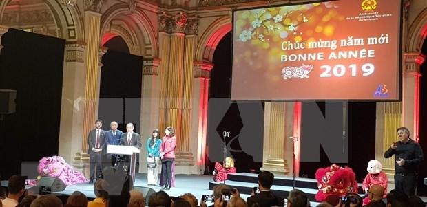 Celebran estudiantes vietnamitas en Francia el Ano Nuevo Lunar hinh anh 1