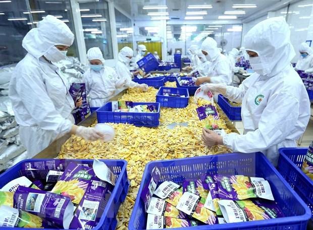 Totaliza 8,29 mil millones de dolares comercio Vietnam- China en enero de 2020 hinh anh 1