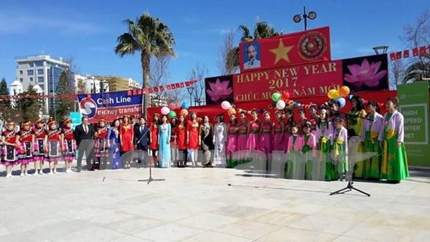 Festejan vietnamitas en Chipre el Tet tradicional hinh anh 1
