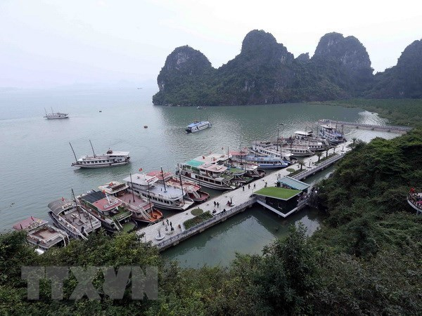 Aclara Vietnam informacion sobre prohibicion a crucero con turistas extranjeros hinh anh 1