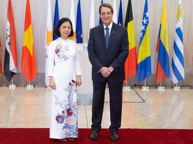 Embajadora vietnamita afirma que su pais otorga importancia a lazos con Chipre hinh anh 1