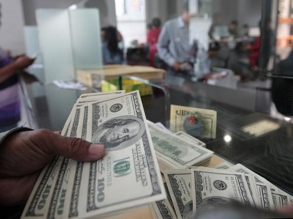 Reserva de divisas de Indonesia se acerca al record hinh anh 1