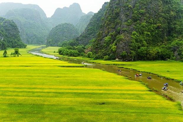 Pospone provincia vietnamita de Ninh Binh inauguracion del Ano Nacional de Turismo 2020 hinh anh 1