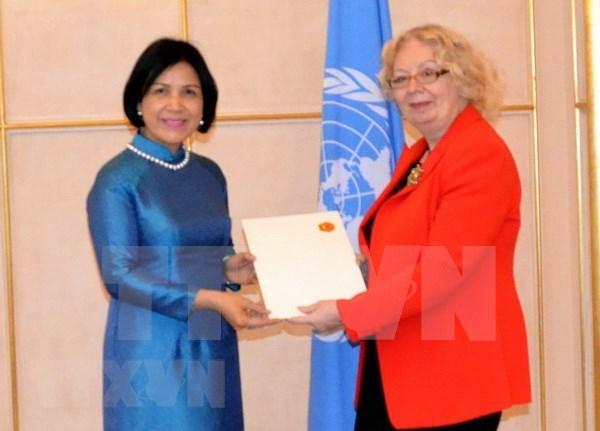 Prioriza Vietnam participacion en actividades de la ONU hinh anh 1