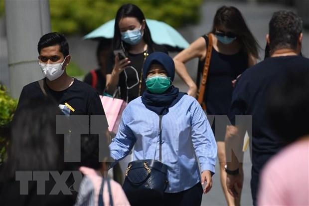 Filipinas y Singapur mantienen control epidemiologico para frenar avance del coronavirus hinh anh 1