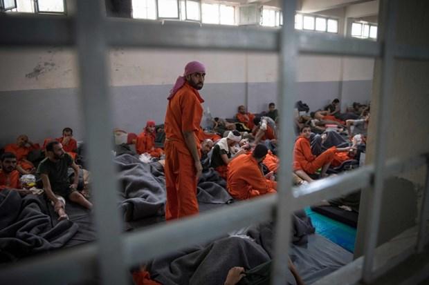 Rechaza Indonesia repatriacion de exmiembros del Estado Islamico hinh anh 1