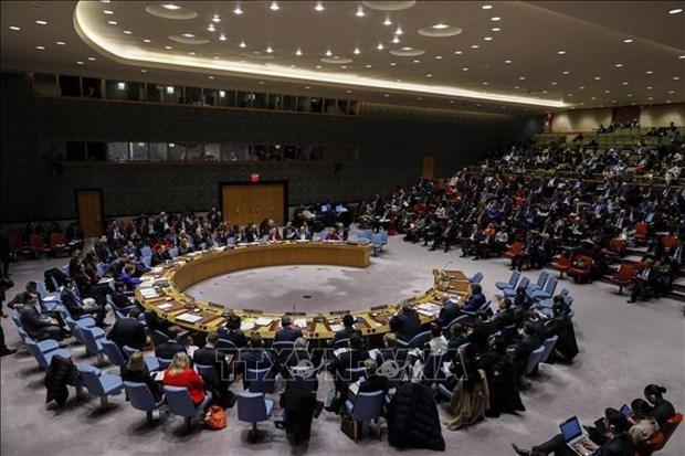 Exhorta Vietnam a promover dialogo y buscar soluciones para el conflicto israeli-palestino hinh anh 1