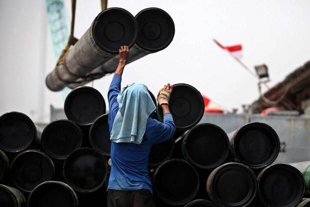 Impulsa Indonesia desarrollo del sector del acero hinh anh 1