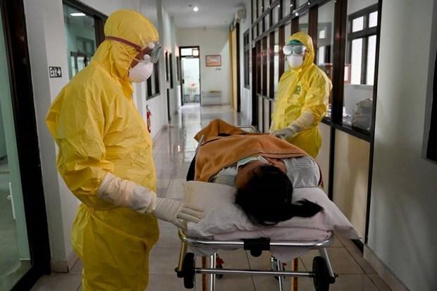 Anuncia Indonesia primer caso sospechoso de coronavirus hinh anh 1