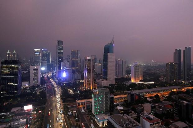 Crecimiento economico de Indonesia disminuira en 2020 debido al coronavirus hinh anh 1