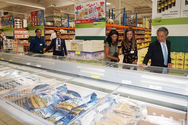 EVFTA, nuevo impulso para nexos economicos entre Vietnam y la Republica Checa hinh anh 1
