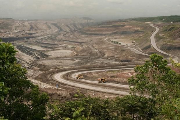 Afloja Indonesia restricciones en ley minera hinh anh 1