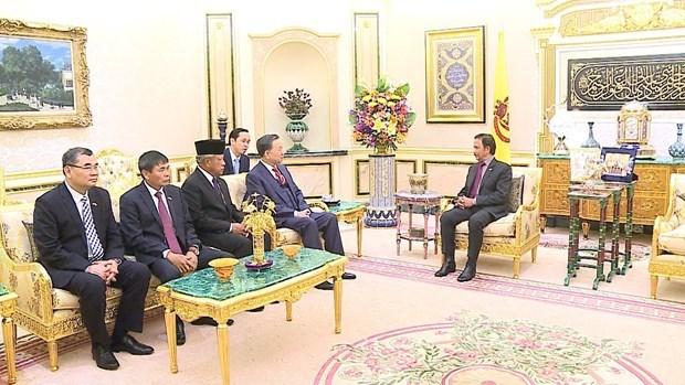 Proyectan Vietnam y Brunei impulsar cooperacion en prevencion de crimenes hinh anh 1