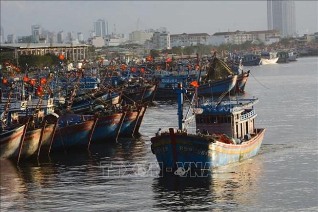 Revisan la pesca con responsabilidad en localidades centrales de Vietnam hinh anh 1