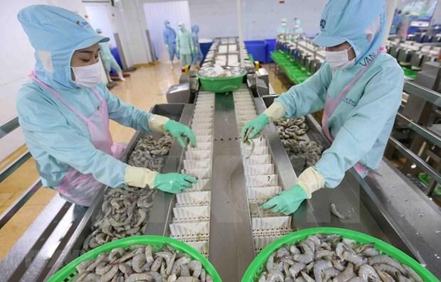 Aspira Vietnam a ingresar 43 mil millones de dolares por exportaciones agricolas en 2020 hinh anh 1