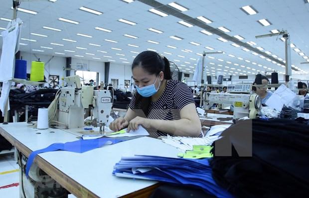 Sectores vietnamitas se enfrentaran dificultades debido a COVID-19 hinh anh 1