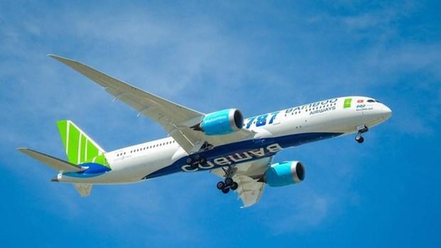 Abriran vuelos directos desde Vietnam hacia la India y Republica Checa hinh anh 1