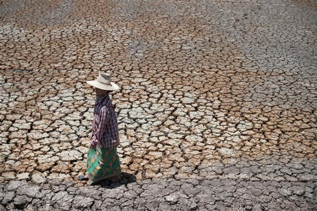 Garantiza Tailandia el suministro de agua limpia durante la sequia hinh anh 1