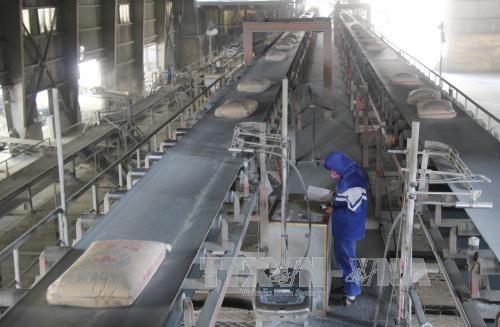 Preven aumento de demandas de cemento en Vietnam en 2020 hinh anh 1
