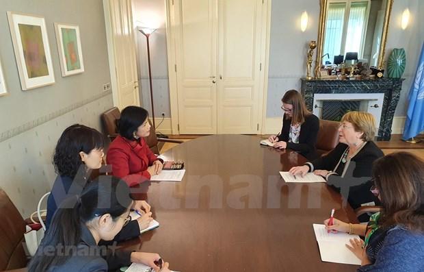 Realza ONU logros de Vietnam en materia de derechos humanos hinh anh 1