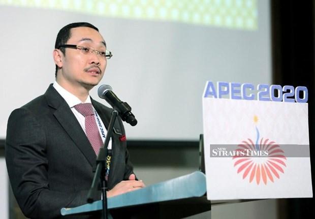 Propone Malasia garantizar los Objetivos de Bogor en la Vision del APEC post-2020 hinh anh 1