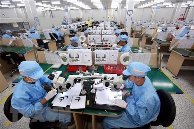 Mantendra Vietnam dialogo con Estados Unidos para promover comercio bilateral hinh anh 1