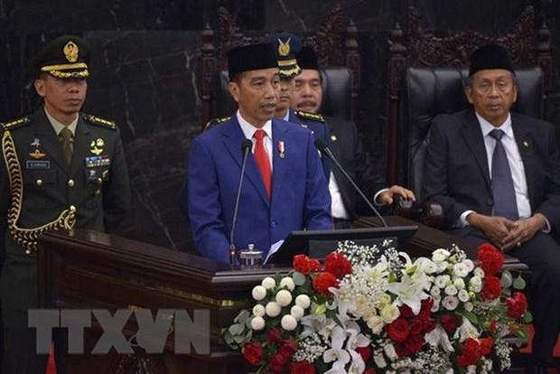 Inversion es clave para promover el crecimiento economico, enfatizo Presidente indonesio hinh anh 1