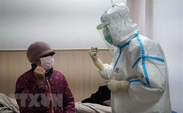 Alta medica para decimoquinto caso de coronavirus en Vietnam hinh anh 1