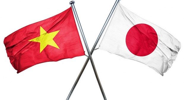 Vietnam y Japon realizan reunion consultiva de defensa hinh anh 1
