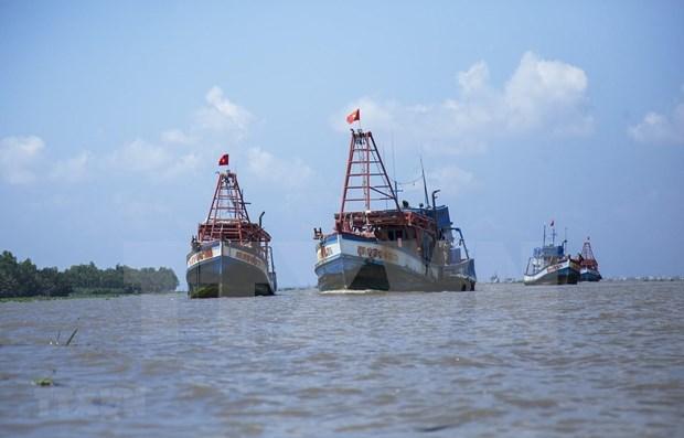 Copresiden Vietnam y Japon seminario sobre sector maritimo hinh anh 1