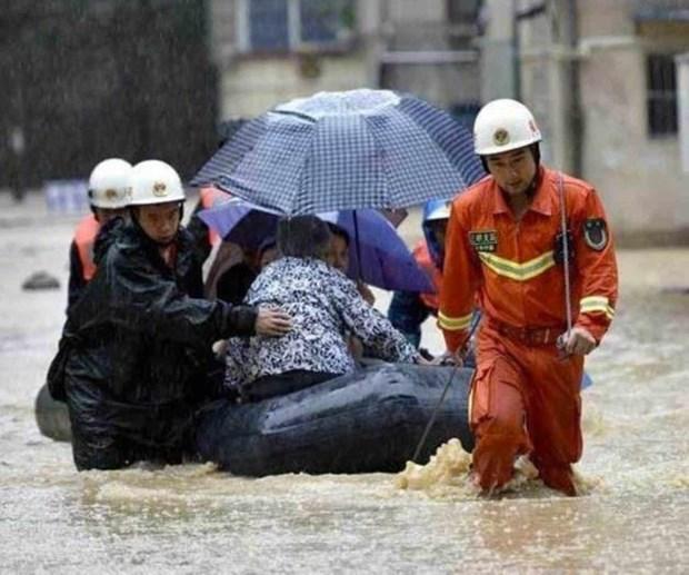 Al menos ocho muertos por inundacion en Indonesia hinh anh 1