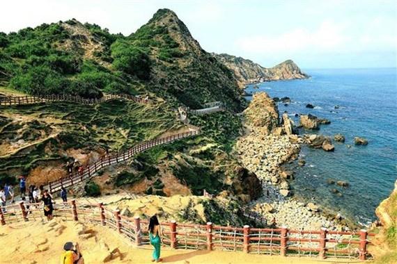 Mercado turistico de Vietnam espera recuperarse en verano hinh anh 1