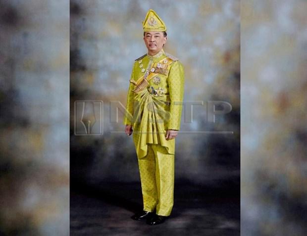 Lideres politicos de Malasia se entrevistan con el rey para establecer nuevo gabinete hinh anh 1