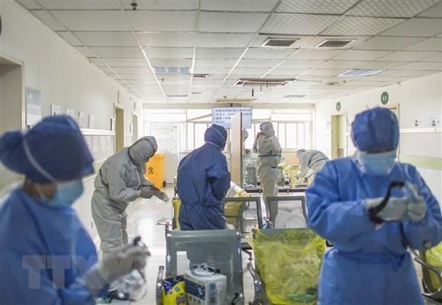 Singapur acusa a ciudadano chino infectado de coronavirus por mentir a funcionarios hinh anh 1