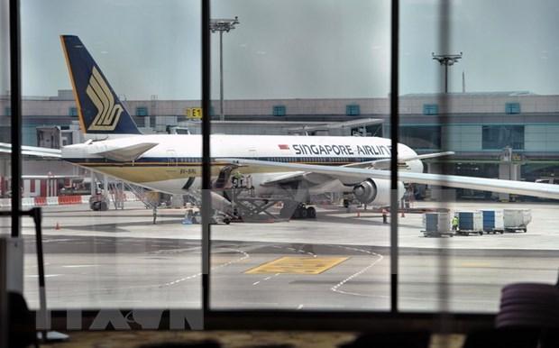 Singapore Airlines frena contrataciones ante riesgo del COVID-19 hinh anh 1