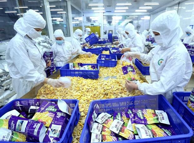 Disminuyen exportaciones vietnamitas de productos agricolas, forestales y pesquero hinh anh 1