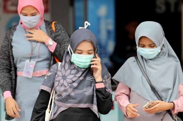 Indonesia confirma primeros pacientes de COVID-19 hinh anh 1