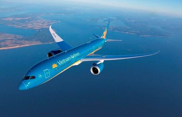 Suspendera Vietnam Airlines vuelos a Corea del Sur hinh anh 1