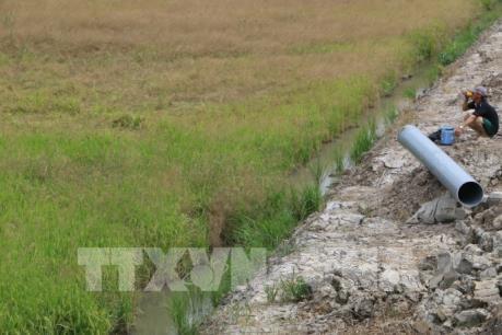 Union Europea ayuda a vietnamitas afectados por sequia e intrusion salina hinh anh 1