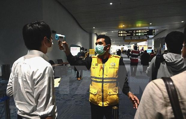 Turismo de Indonesia sufre afectaciones por COVID-19 hinh anh 1